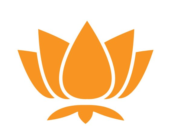 lotus-whole-orange